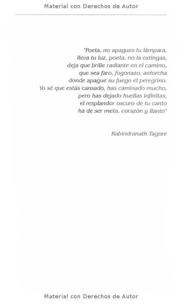 Interior del Libro: Paisajes de Ausnecias de Oli Gullino 04