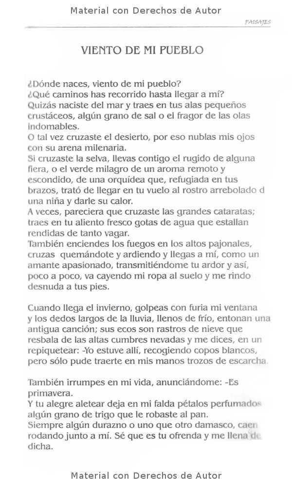 Interior del Libro: Paisajes de Ausnecias de Oli Gullino 07