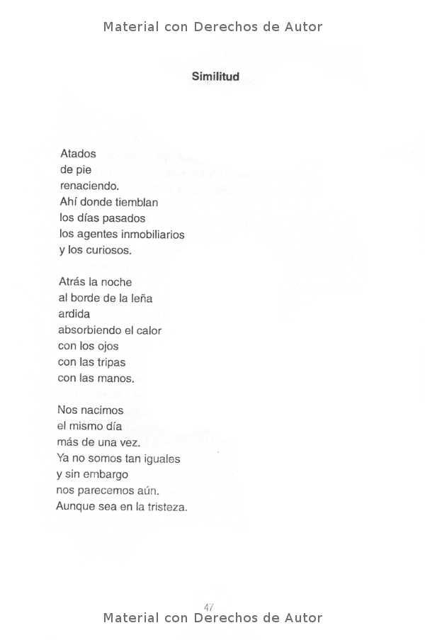 Interior del Libro: Rocanrol de Darío Martínez 07